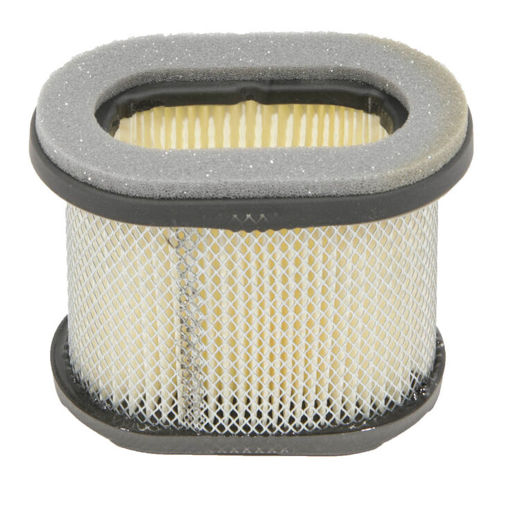 Briggs and Stratton Part Number 697029. Air Filter
